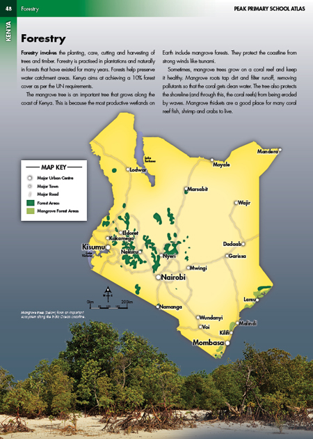 Kenya Forestry Photo Illustrated Map